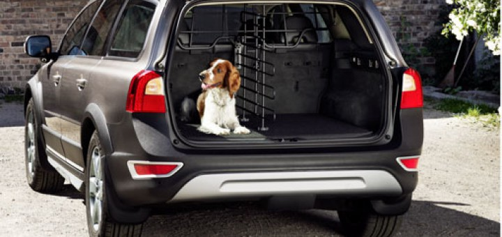 volvo-for-dog